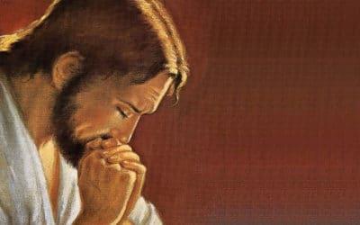 Quelques aspects de l'humanité du Christ
